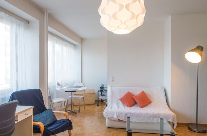 Light, equiped, cosy apartment GVA
