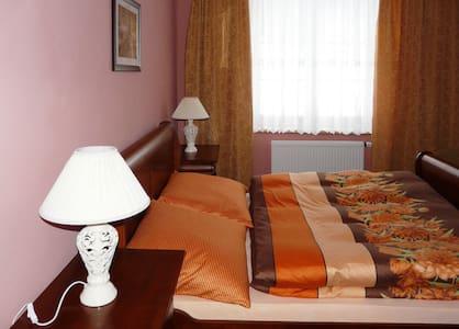 Pokoj v penzionu - Soběšovice - Bed & Breakfast