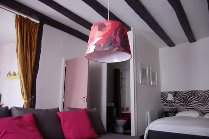 T1 bis  Atypique centre médiéval - La Roche-Posay - Appartement