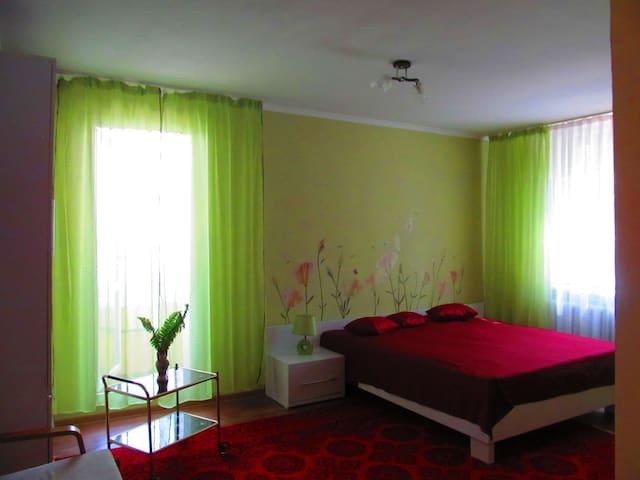 1 комн. благоустроенная квартира в г.Дубоссары