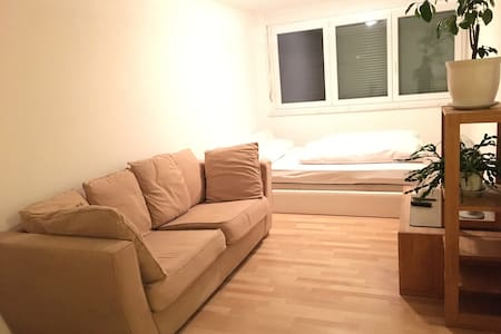 Beautiful Apartment near city center - Nürnberg