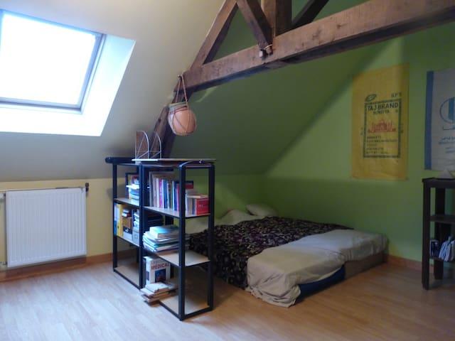 chambre dans maison individuelle - Janzé