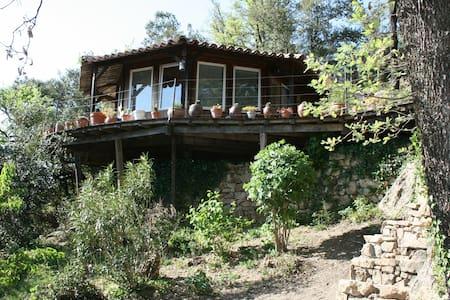 Maisonnette dans les arbres, en Cévennes. - Monoblet - Casa cueva