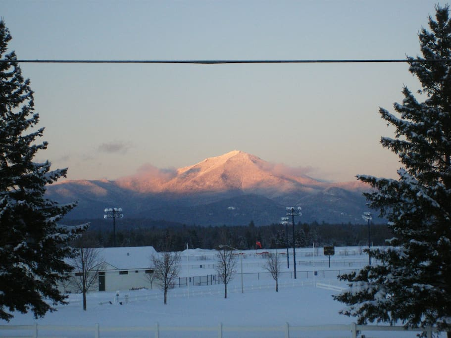 Our winter view! We Do allow dogs and have a spacious and private backyard behind our garage.