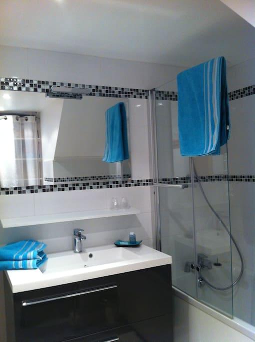 salle de bain neuve design rétro et WC privé