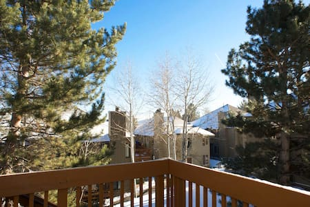 1BR Comfortable Mountain Condo