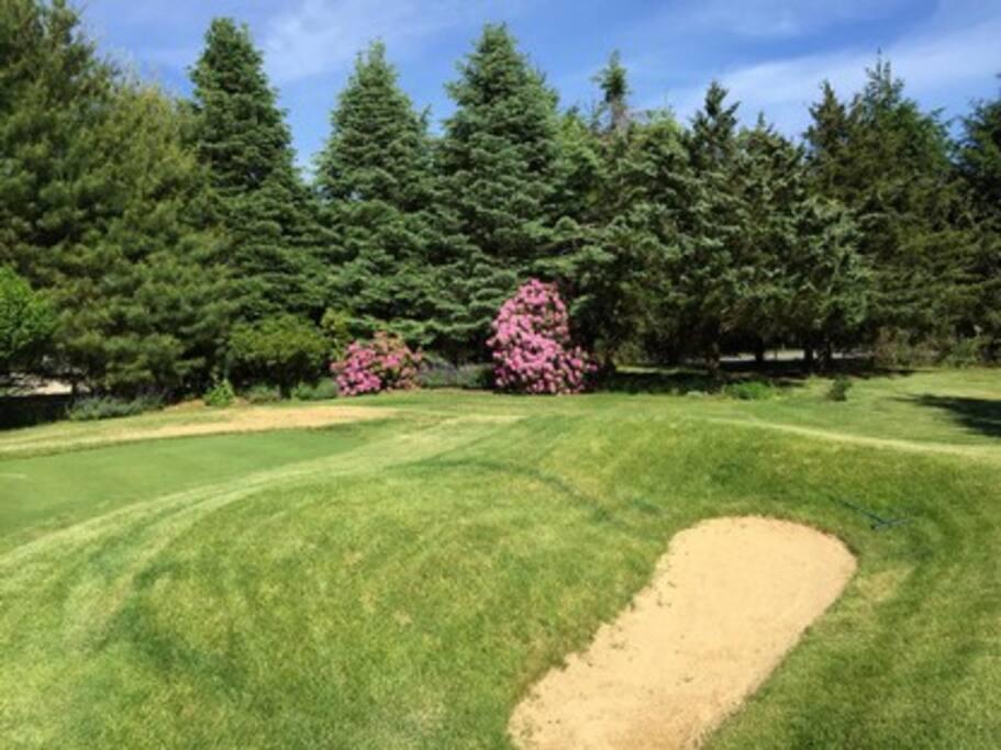 Par 3 golf hole