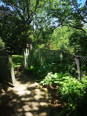 Entrance to fenced yard.