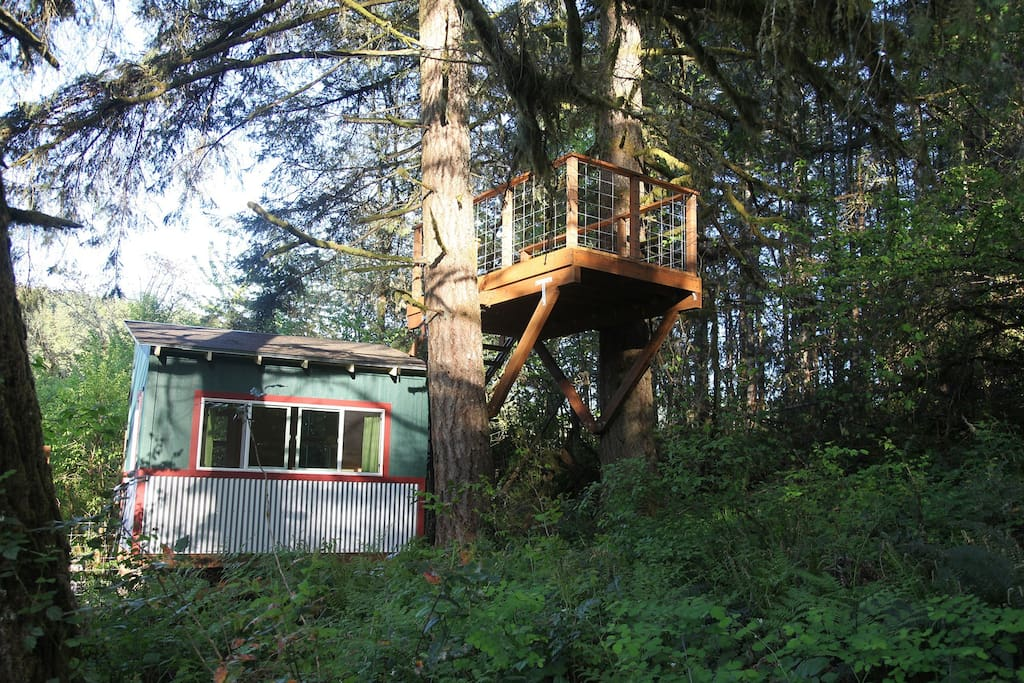 Cottage and tree deck.