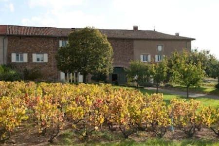 Authentique maison vigneronne - Régnié-Durette - Dom