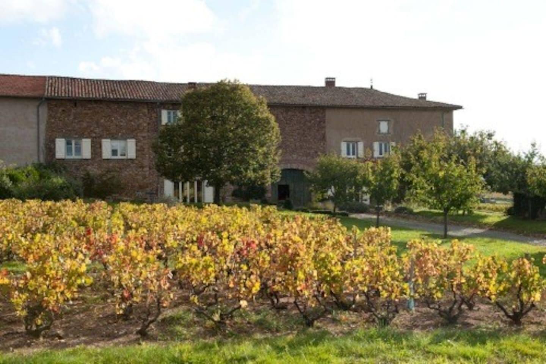 Maison Vigneronne authentique
