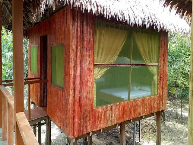 Amazon Antares Lodge