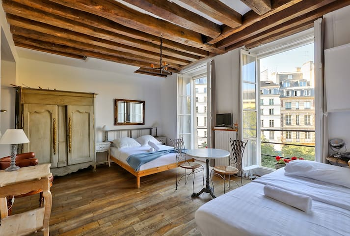 Historical Flat On Ile de La Cite For 3