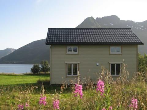 Rumah menawan di tepi laut, Lofoten!