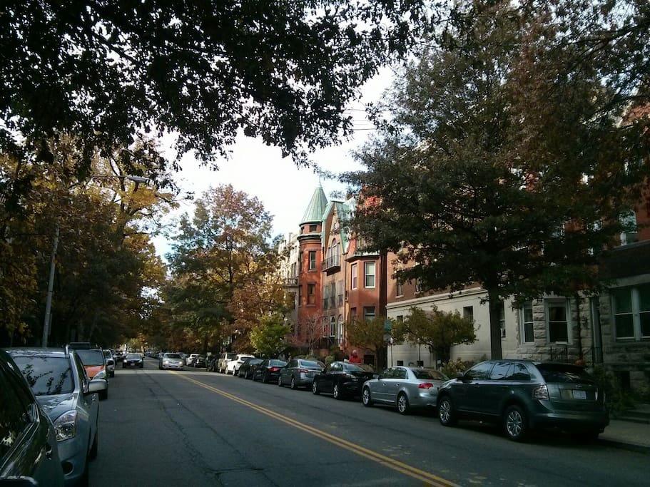 Quiet and charming neighborhood
