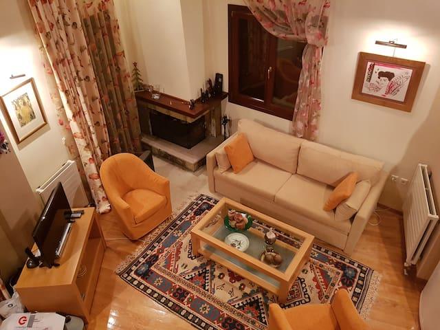 Καθιστικό κάτω με τζάκι / Living room and fireplace-lower level
