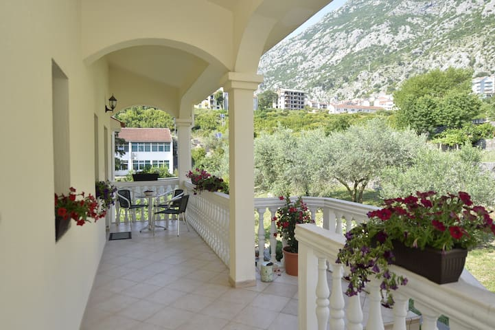 Charming studio apartment Cattaro