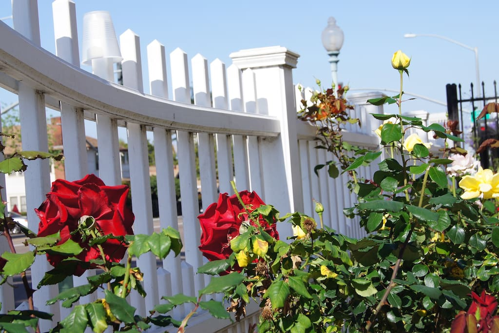 Rose Garden and Flowers surround and Adorn this Historic Gem.
