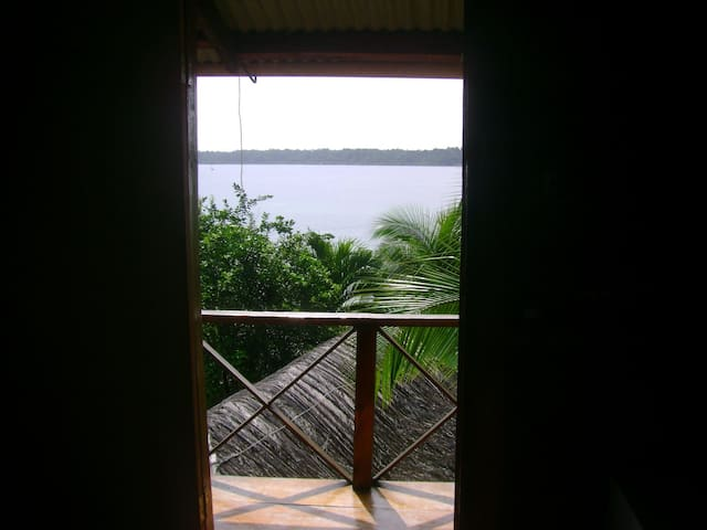 Room with the View