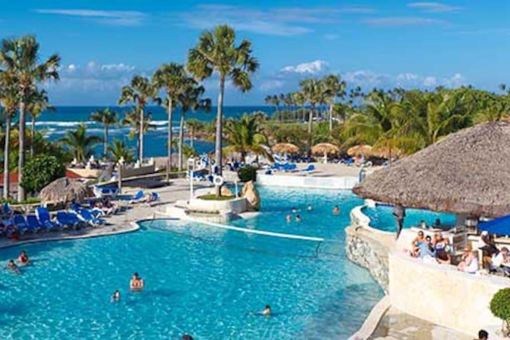Tropical Pool Fun