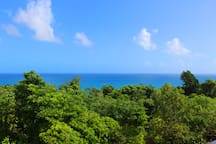 View from the veranda just outside your door.