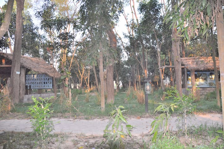 Rhino Lodge Bardia (Bardia National Park )