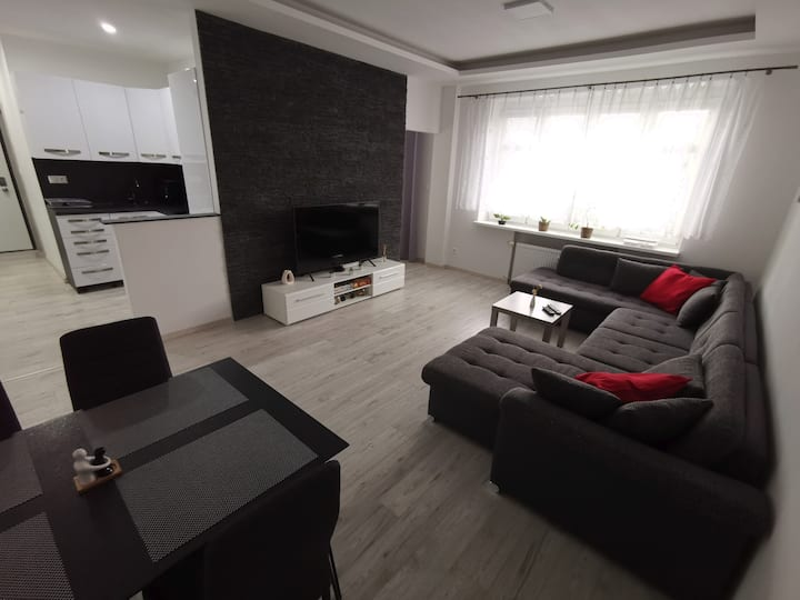 Apartment Karadzicova 15 min to the centre on foot