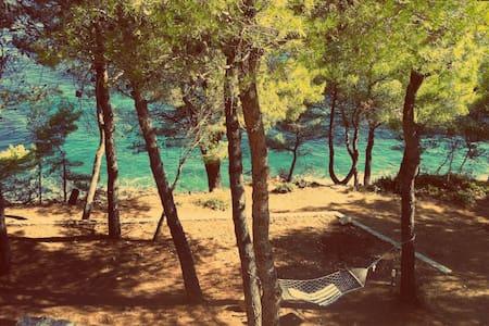 House in pine forest-across Zadar