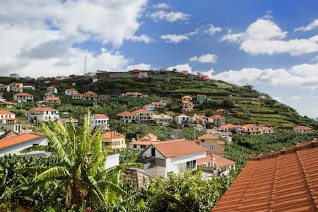 LowCost - Eco Banana House - Ponta Do Sol - 別荘