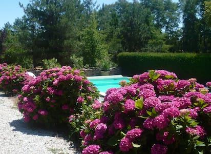 Cosy villa in Poitou Charentes pool - Clussais-la-Pommeraie - House - 1