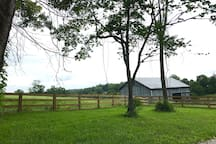 Kentucky farms are always fun to see! But no farm work for you at your home away from home!