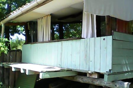la cabane - Mézel - Blockhütte