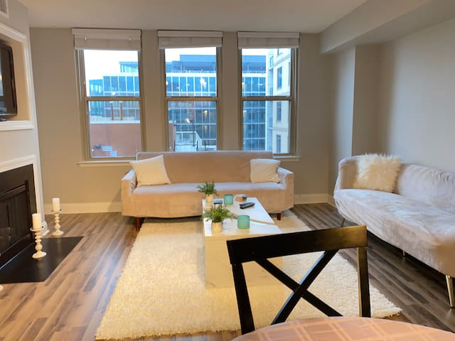 Comfy Chic Apartment in Downtown DC