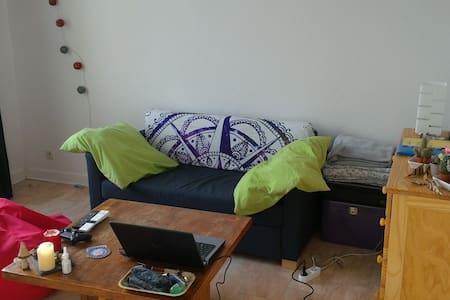 Appartement proche centre ville - Grenoble