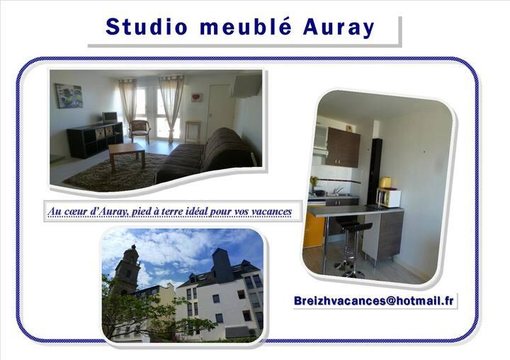 Coquet studio au cœur de la ville d'Auray
