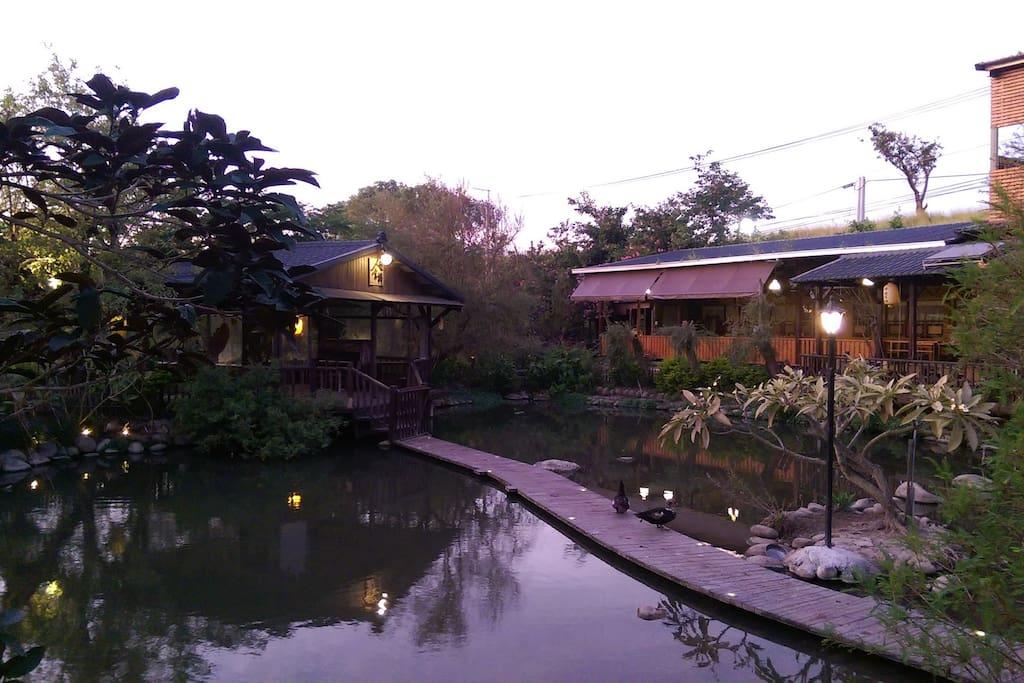 生態園區內之生態池一景
