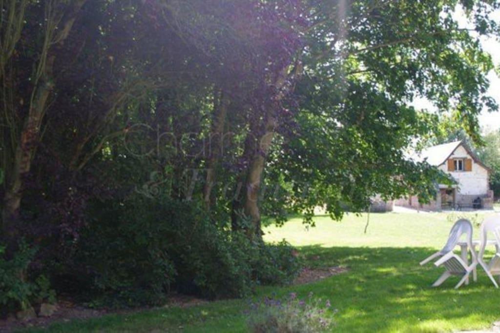 Un grand terrain d'herbe