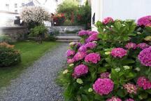 Un autre coin du jardin en fleurs
