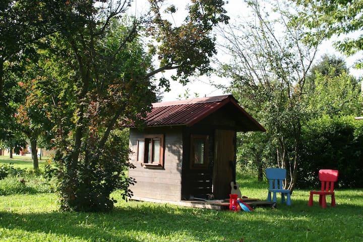 ideal garden  - Abano Terme - Ev
