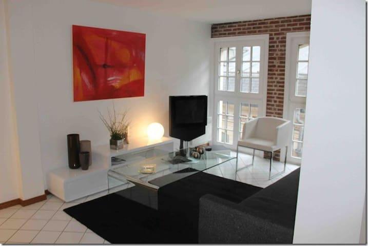 appartement lille ( vieux-lille)
