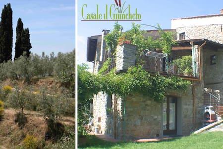 Casale il Giuncheto - Chianti hills - Castelfranco di Sopra - วิลล่า