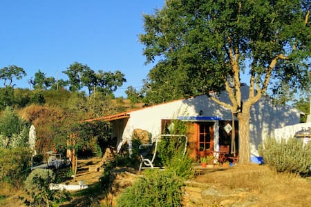Monte Valindo: Guesthouse, the real Alentejo!
