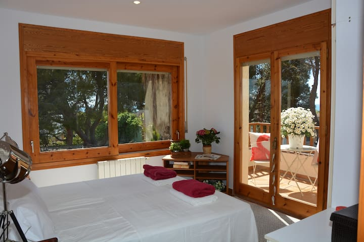 Main Room 1. 1 double bed 180 * 200 or 2 single beds 90 * 200. With terrace and double sea view. Est and South.