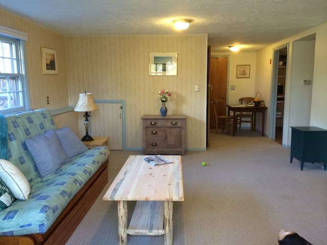 Lovely, Quiet Puppy Paradise - New Paltz - Apartment