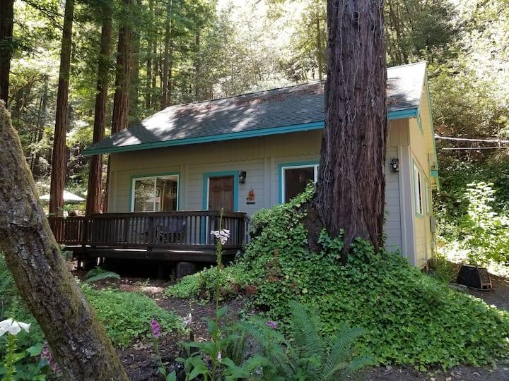 Redwood Birdhouse creek side cottage,
