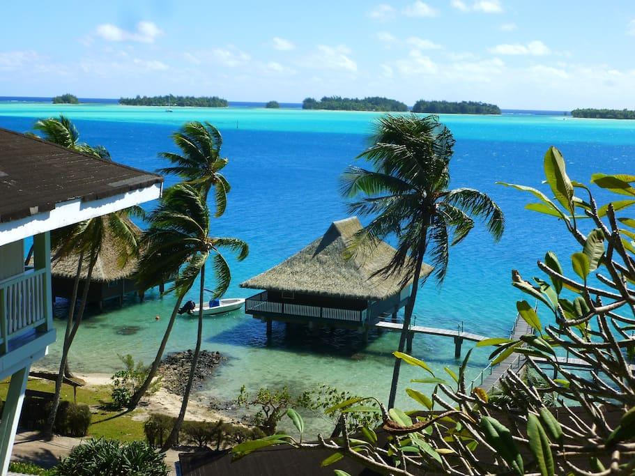 Bora bora overwater bungalow n 3 bungalows for rent in for Bungalows flotantes en bora bora