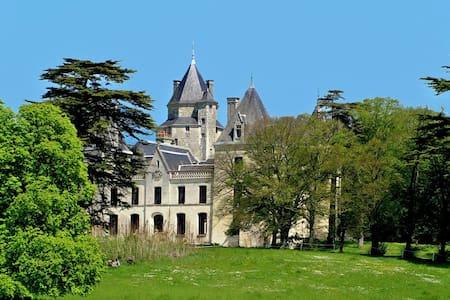 Couedic room in the castle - Bed & Breakfast