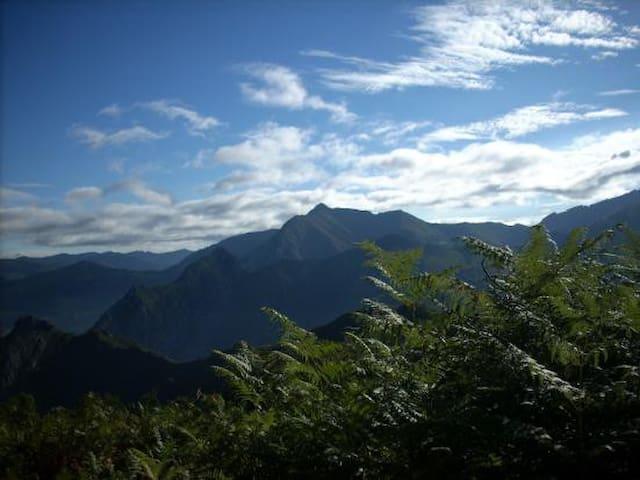 El Bosque Encantado - Soto de Agues - Ev