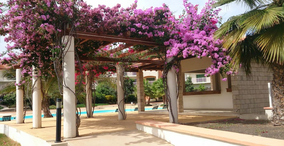 Peaceful 2 Bed/2 Bath Apt-Pool/Garden Views Aircon - Santa Maria - Departamento