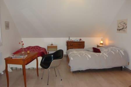 belle chambre cosy et spacieuse avec SDB contigüe - Seloncourt